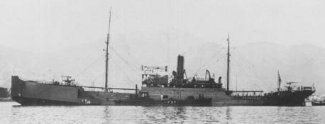 The Japanese navy's 2,080-ton survey ship Koshu, almost certainly was the ship that picked up Amelia Earhart and Fred Noonan from their landfall near Mili's Barre Island, and which carried the Earhart Electra its stern to Saipan, where it was discovered by American forces in June 1944.