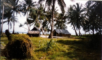 During his 1989 visit to Mili Atoll, Bill Prymak took this photo of a village on Enajet Island.